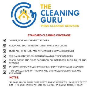 cleaning-guru